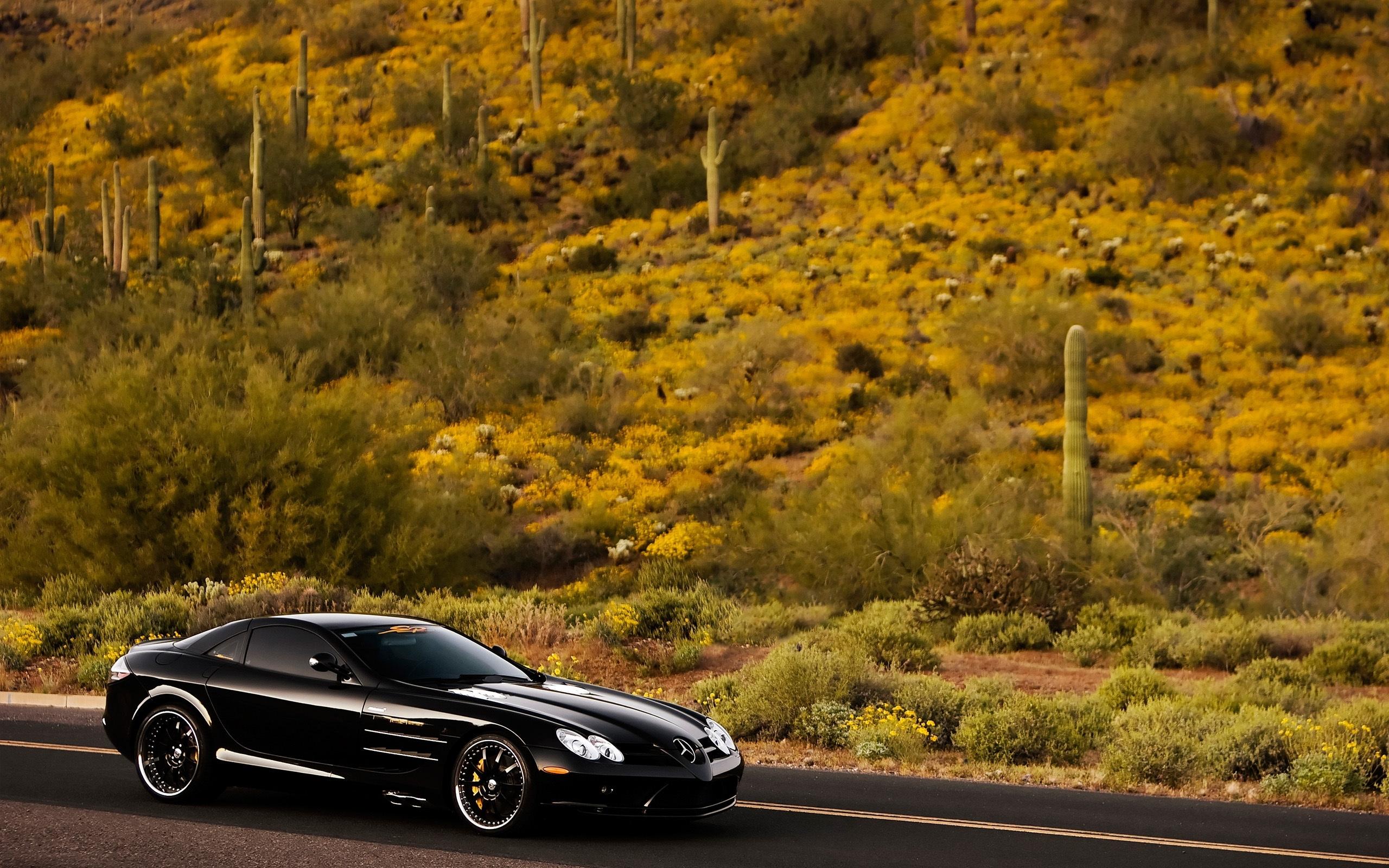 48769 скачать обои Транспорт, Пейзаж, Машины, Природа, Мерседес (Mercedes) - заставки и картинки бесплатно
