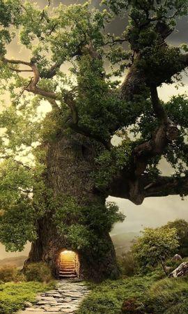 134579 baixar papel de parede Fantasia, Madeira, Árvore, Verdes, Verdura, Entrada, Passos, Planeta - protetores de tela e imagens gratuitamente
