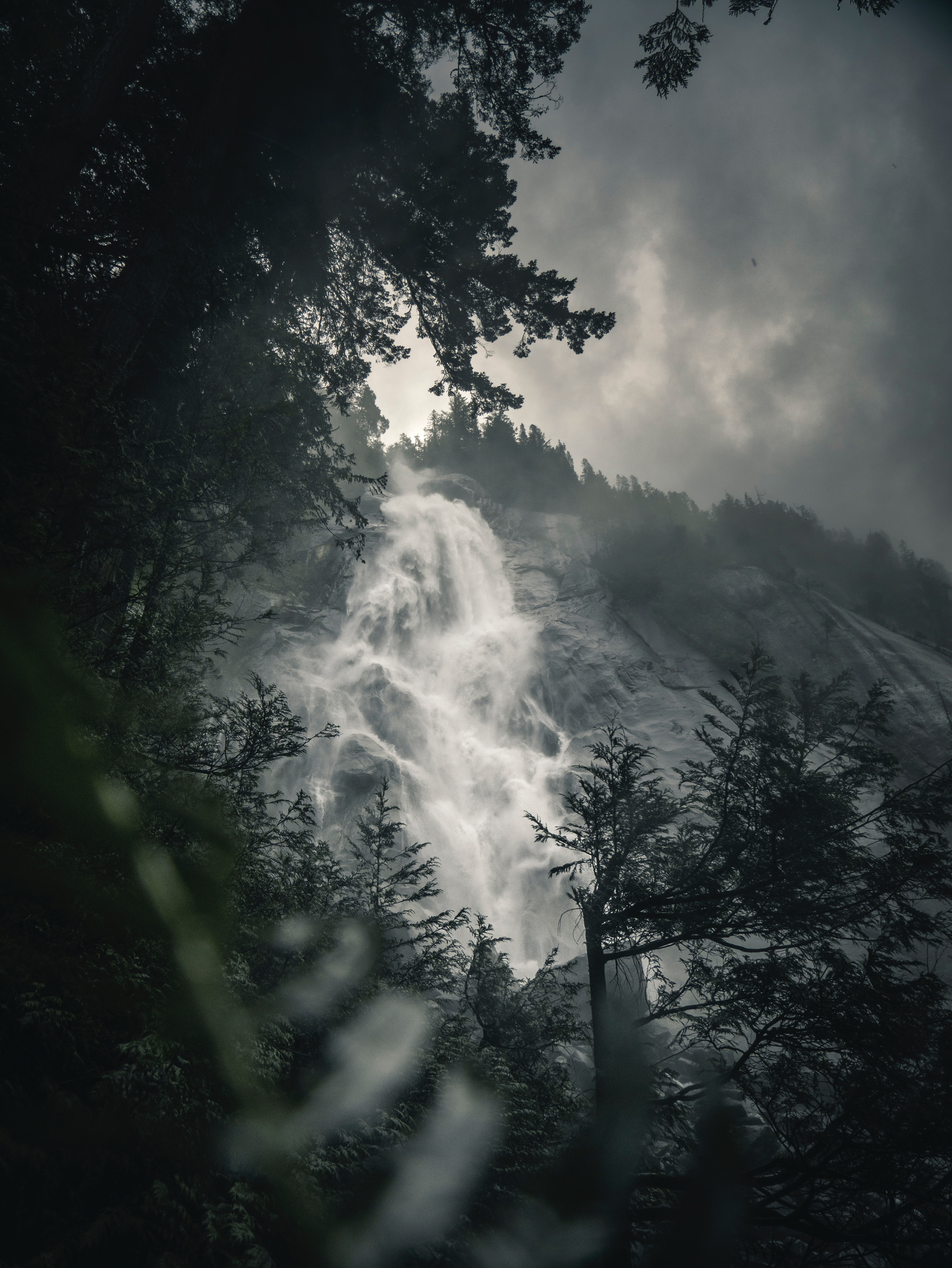 146112 download wallpaper Nature, Waterfall, Fog, Branches, Flow, Break, Precipice, Rock screensavers and pictures for free
