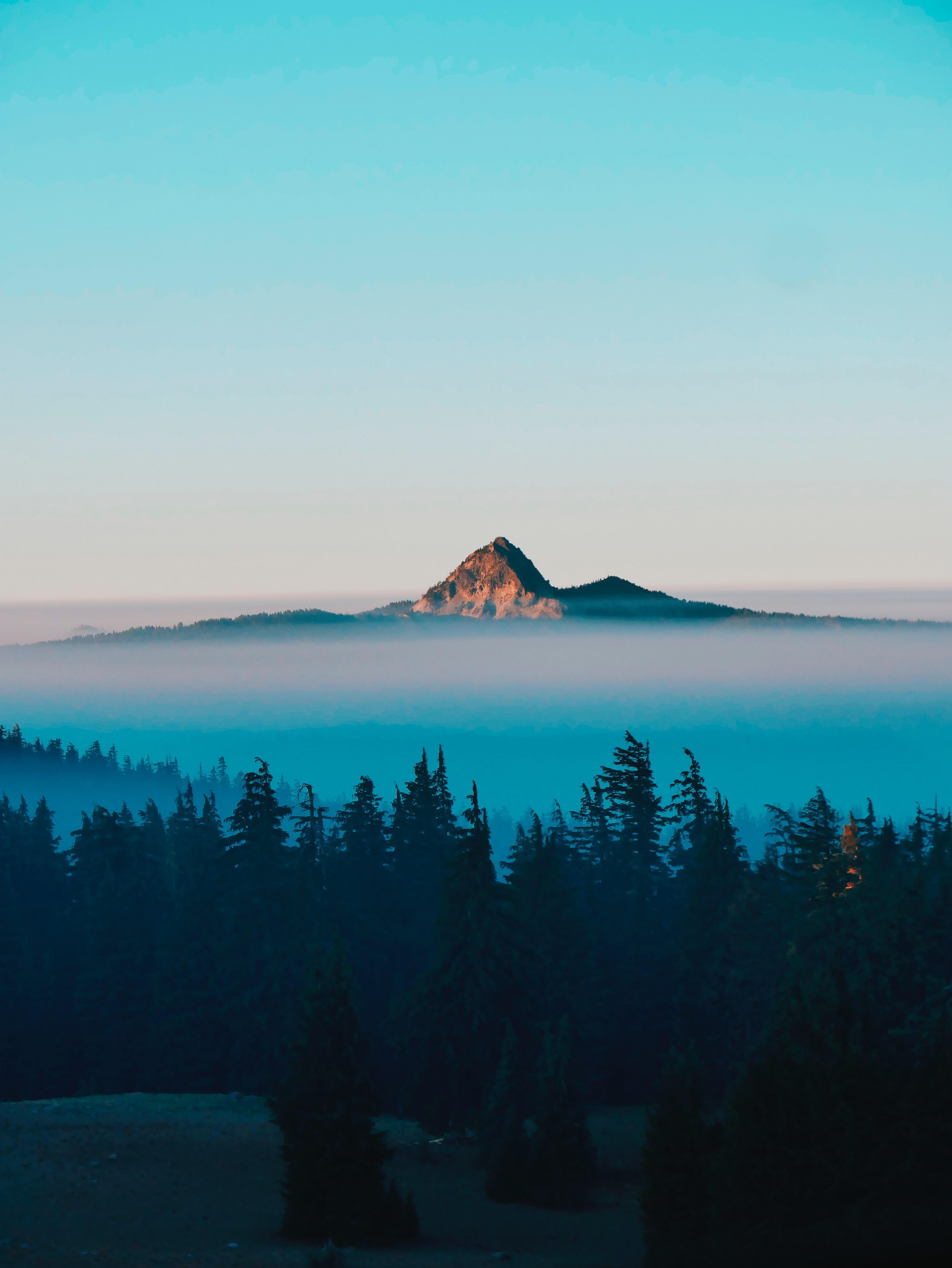 138772 скачать обои Пейзаж, Природа, Деревья, Гора, Вершина, Туман - заставки и картинки бесплатно
