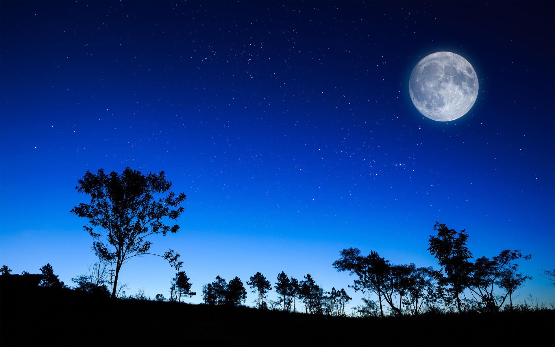 28168 免費下載壁紙 景观, 树, 天空, 夜, 月球 屏保和圖片