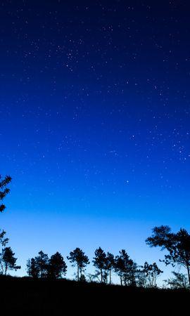 28168 télécharger le fond d'écran Paysage, Arbres, Sky, Nuit, Lune - économiseurs d'écran et images gratuitement