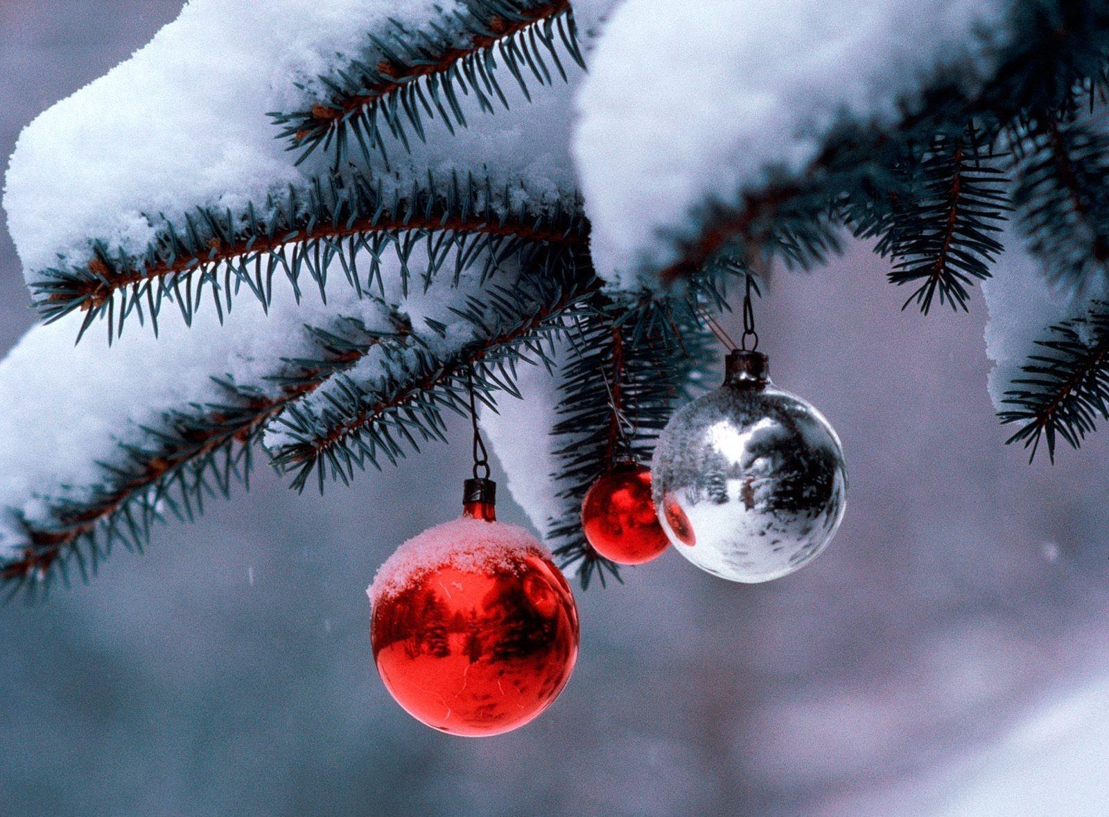 81638 скачать картинку Праздники, Снег, Размытость, Рождество, Новый Год, Праздник, Ветка, Хвоя, Елочные Игрушки - обои и заставки бесплатно