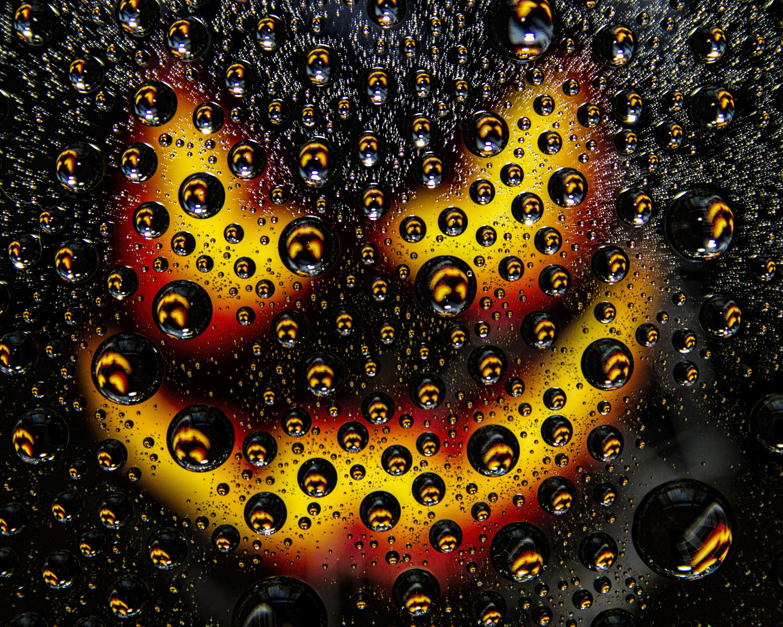 68577 Hintergrundbild herunterladen Makro, Bubbles, Drops, Textur, Texturen, Oberfläche - Bildschirmschoner und Bilder kostenlos