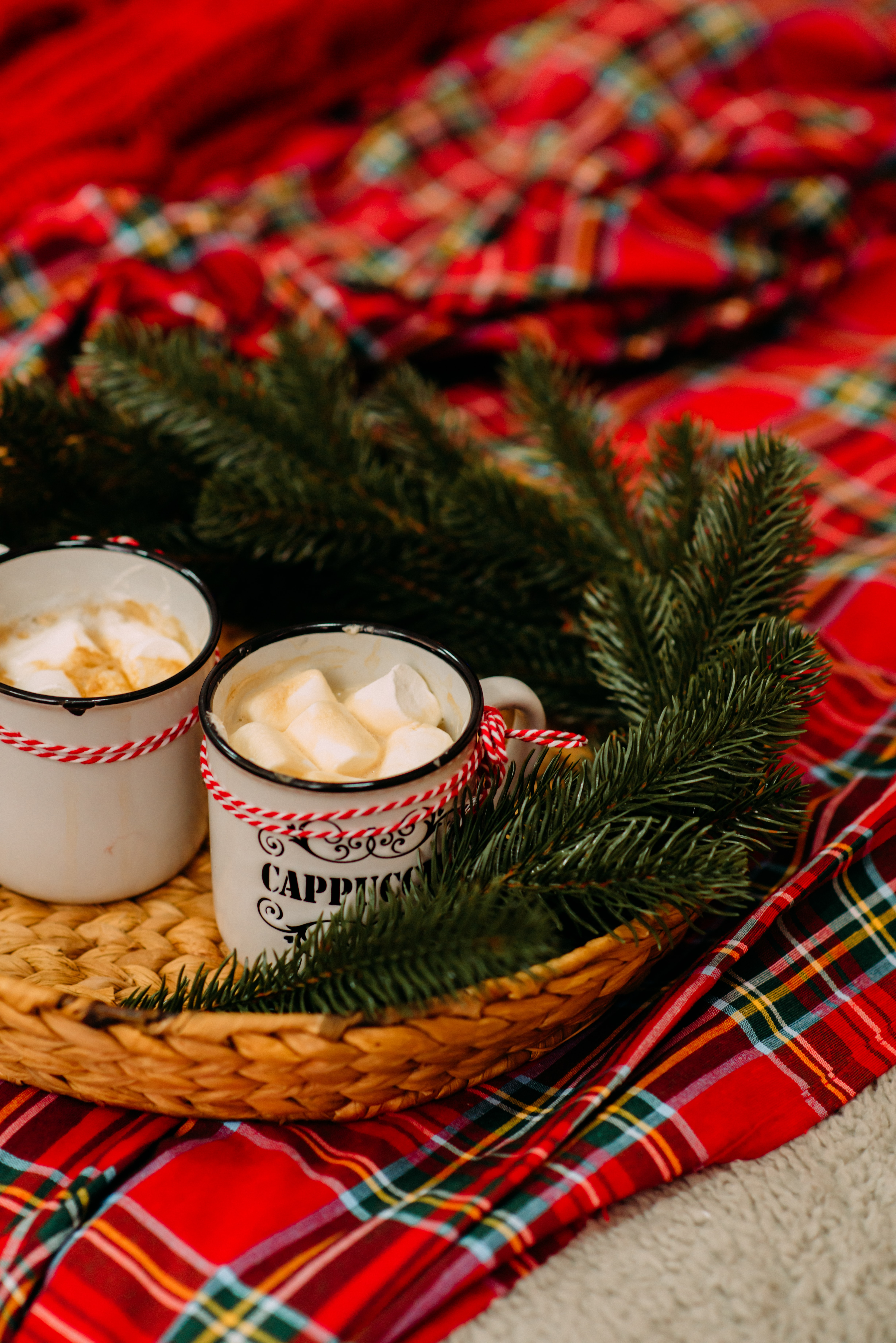 131933 download wallpaper Holidays, Mugs, Marshmallow, Zephyr, Spruce, Fir, Branches, Holiday screensavers and pictures for free
