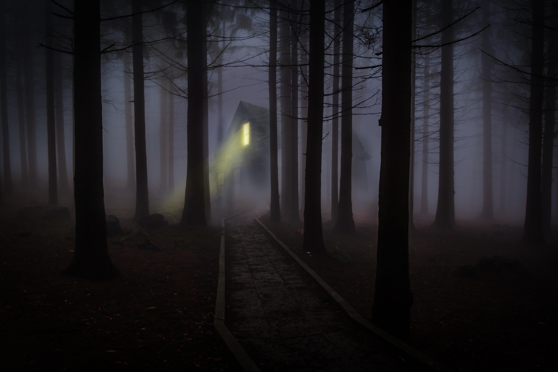 132725 скачать обои Туман, Ночь, Темные, Лес, Домик, Жуткий - заставки и картинки бесплатно