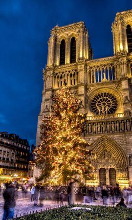 105938 baixar papel de parede Catedral De Notre Dame, Notre Dame De Paris, Paris, França, Área, Quadrado, Ano Novo, Árvore De Natal, Feriado, Cidades - protetores de tela e imagens gratuitamente