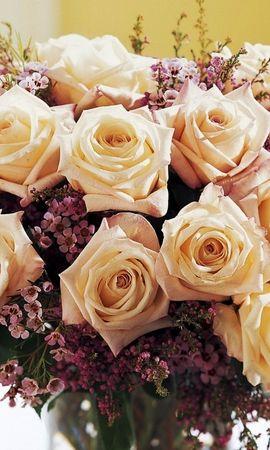 19457 скачать обои Растения, Цветы, Розы, Букеты - заставки и картинки бесплатно