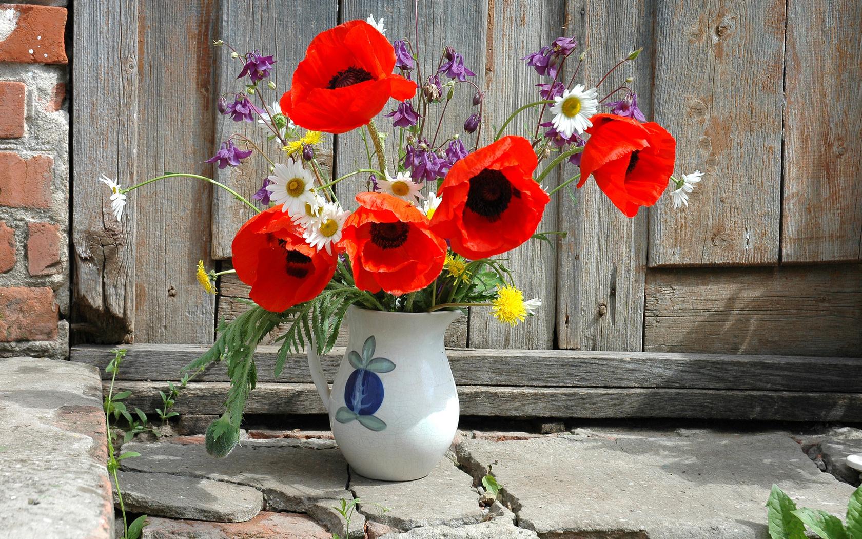 40288 télécharger le fond d'écran Plantes, Fleurs, Bouquets - économiseurs d'écran et images gratuitement