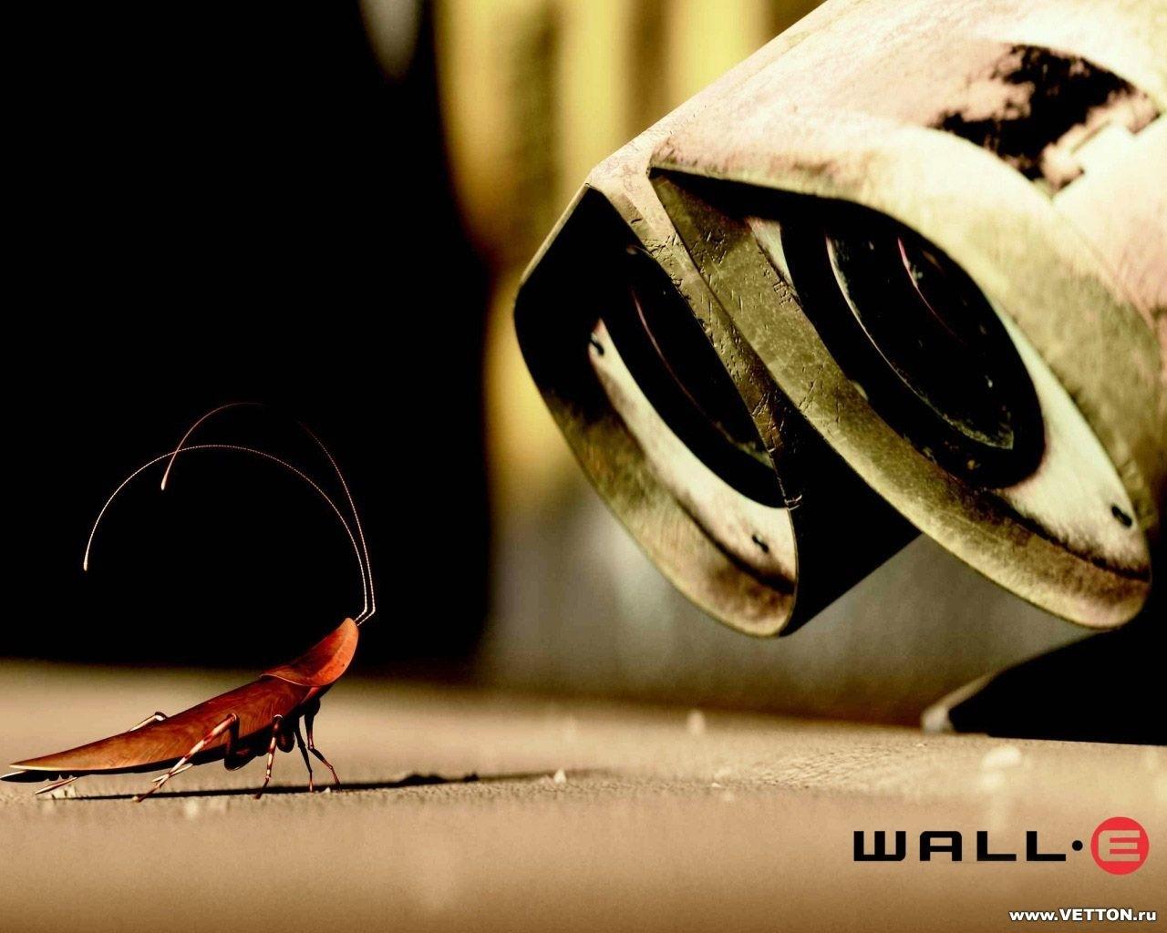 221 скачать обои Мультфильмы, Насекомые, Роботы, Валл-И (Wall-E) - заставки и картинки бесплатно