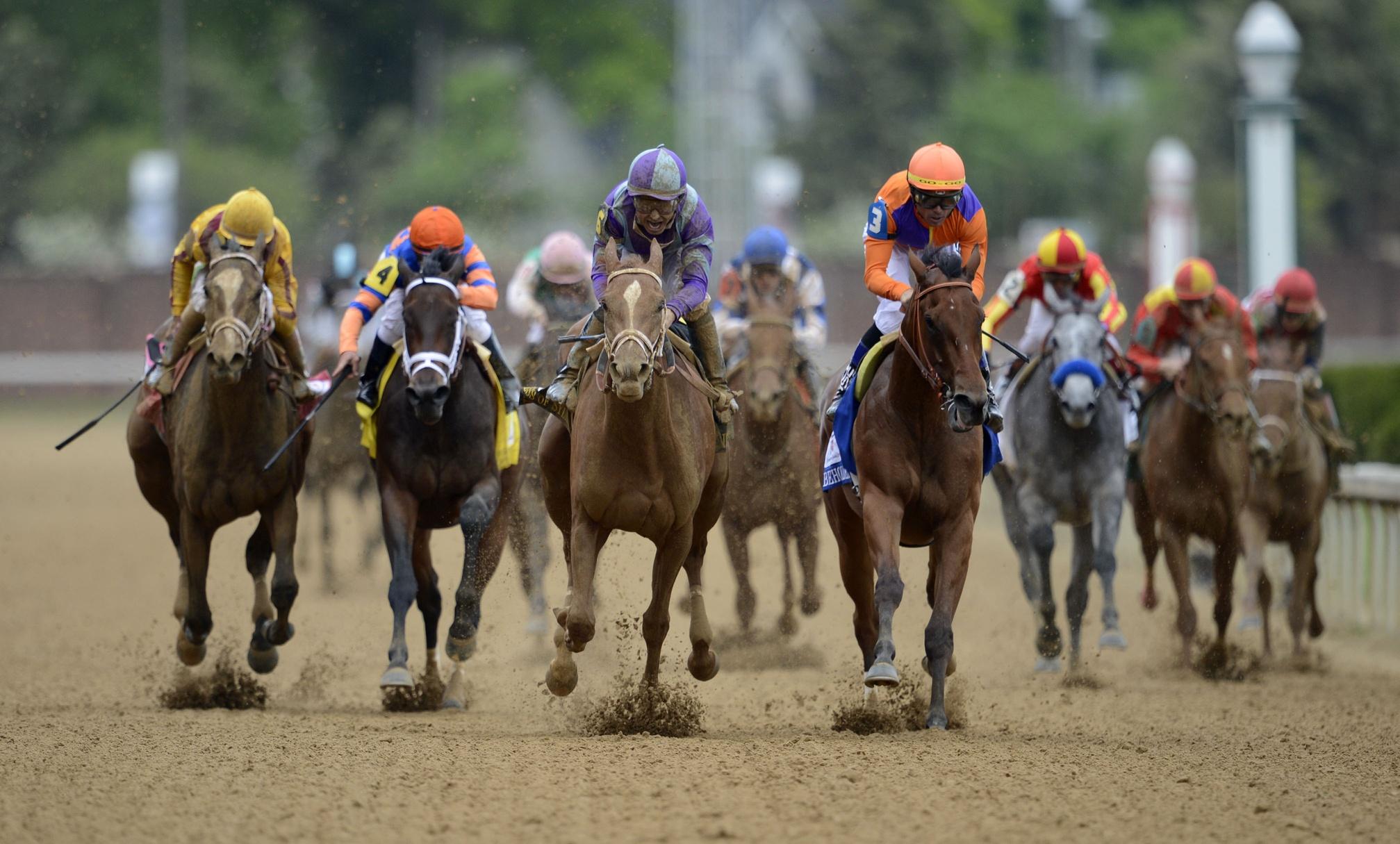 97619 Заставки и Обои Лошади на телефон. Скачать Скачки, Лошади, Спорт, Kentucky Derby, Kentucky Derby 2015, Kentucky Derby Odds картинки бесплатно