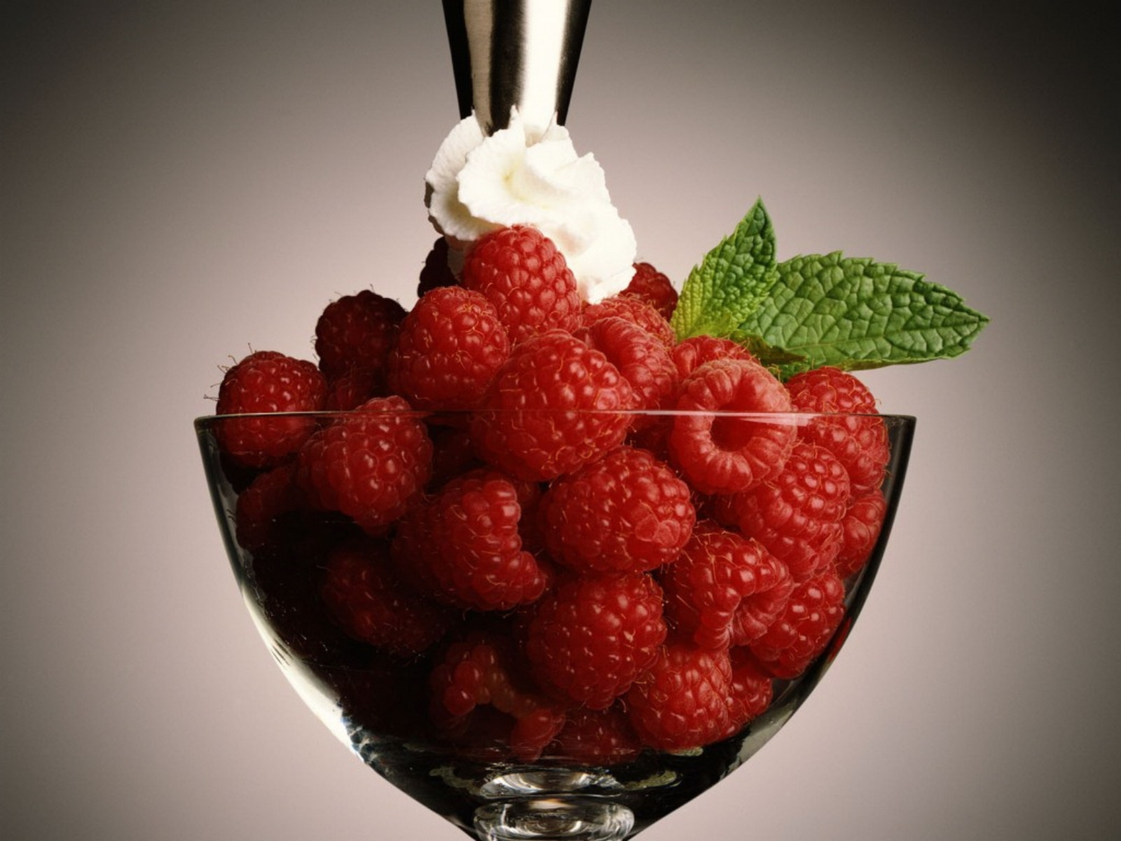 7377 download wallpaper Fruits, Food, Dessert, Raspberry, Berries screensavers and pictures for free