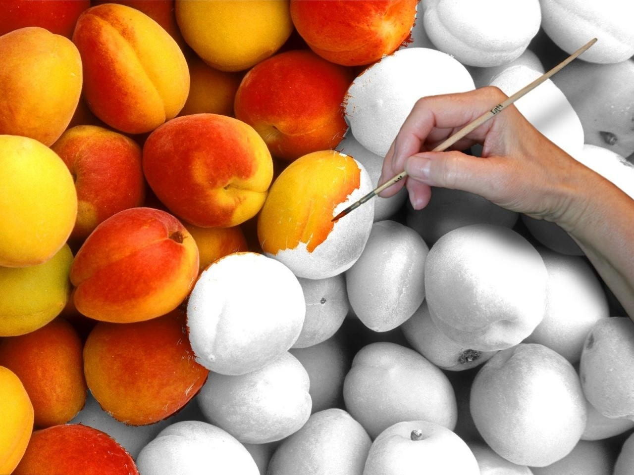 6317 download wallpaper Fruits, Food, Art Photo, Peaches screensavers and pictures for free