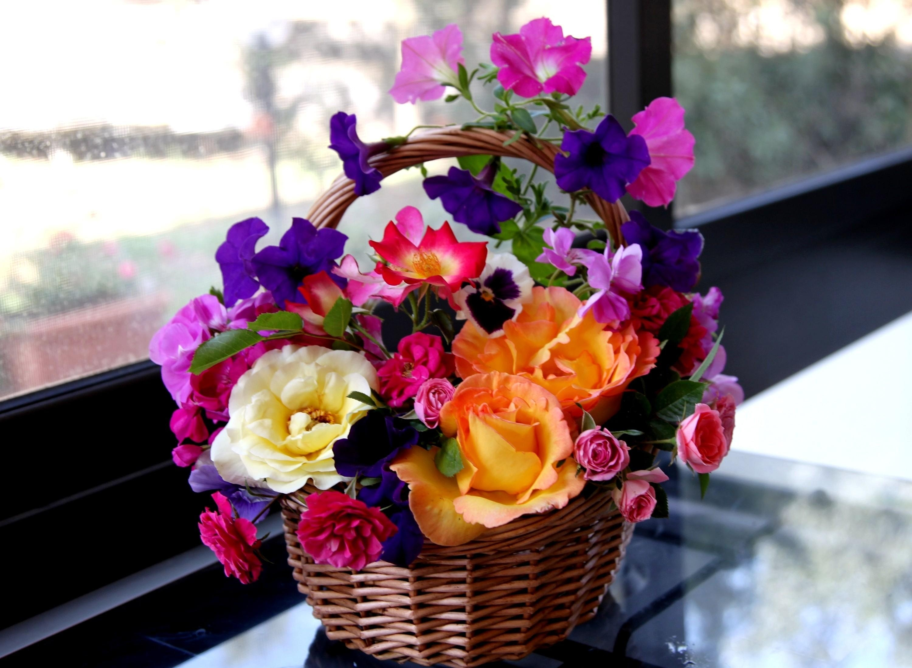 134609 download wallpaper Flowers, Roses, Pansies, Basket, Composition, Petunia screensavers and pictures for free