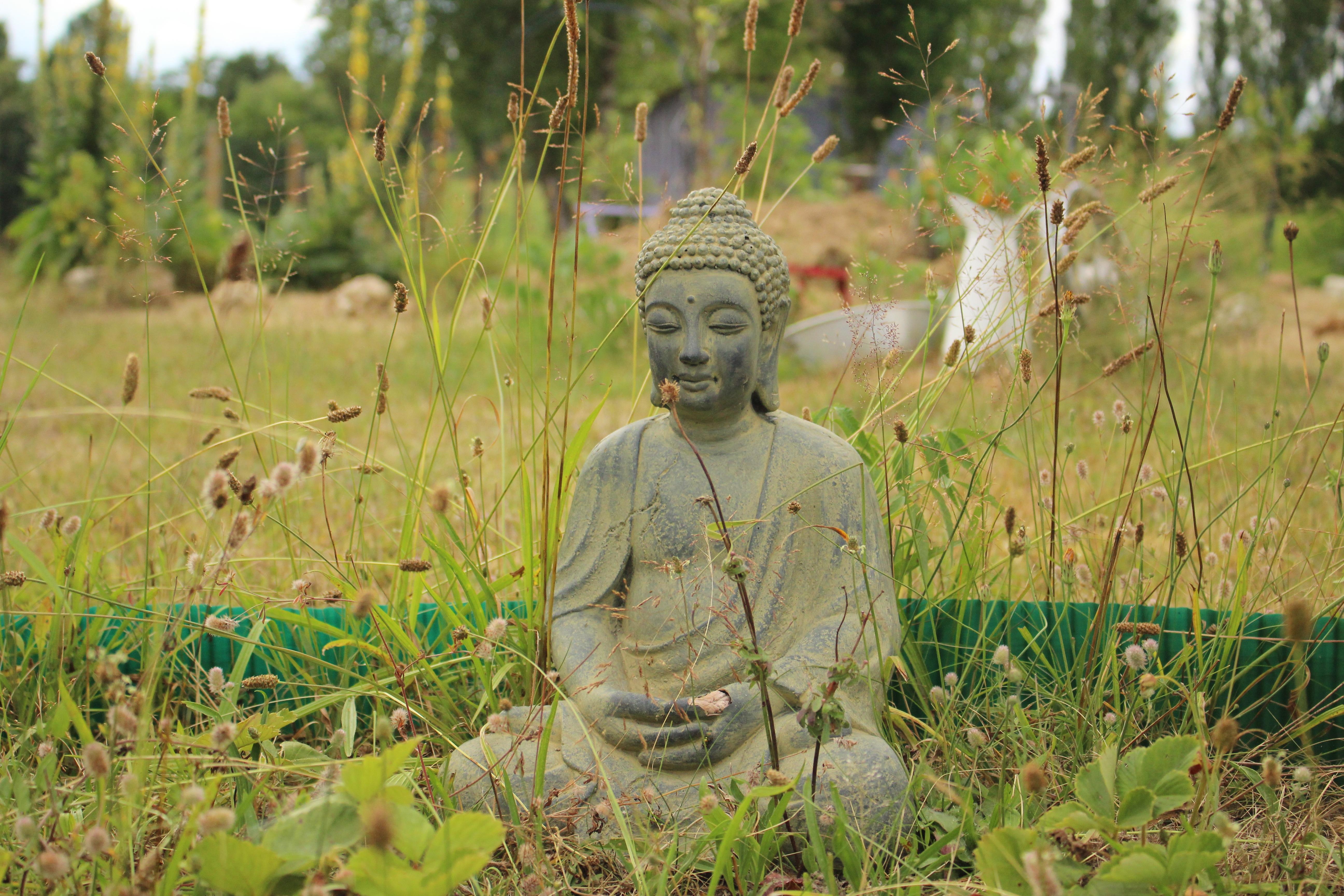 145073 скачать обои Разное, Будда, Буддизм, Медитация, Трава - заставки и картинки бесплатно