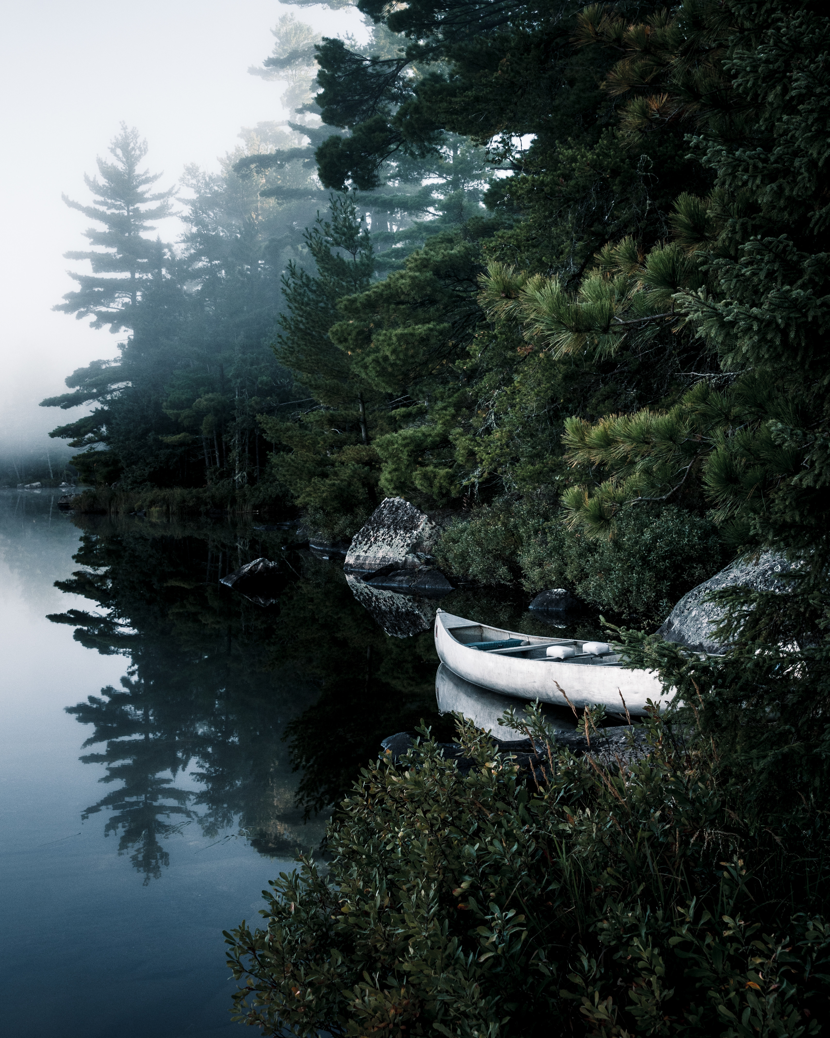 153213 download wallpaper Nature, Boat, Lake, Spruce, Fir, Branches, Trees screensavers and pictures for free