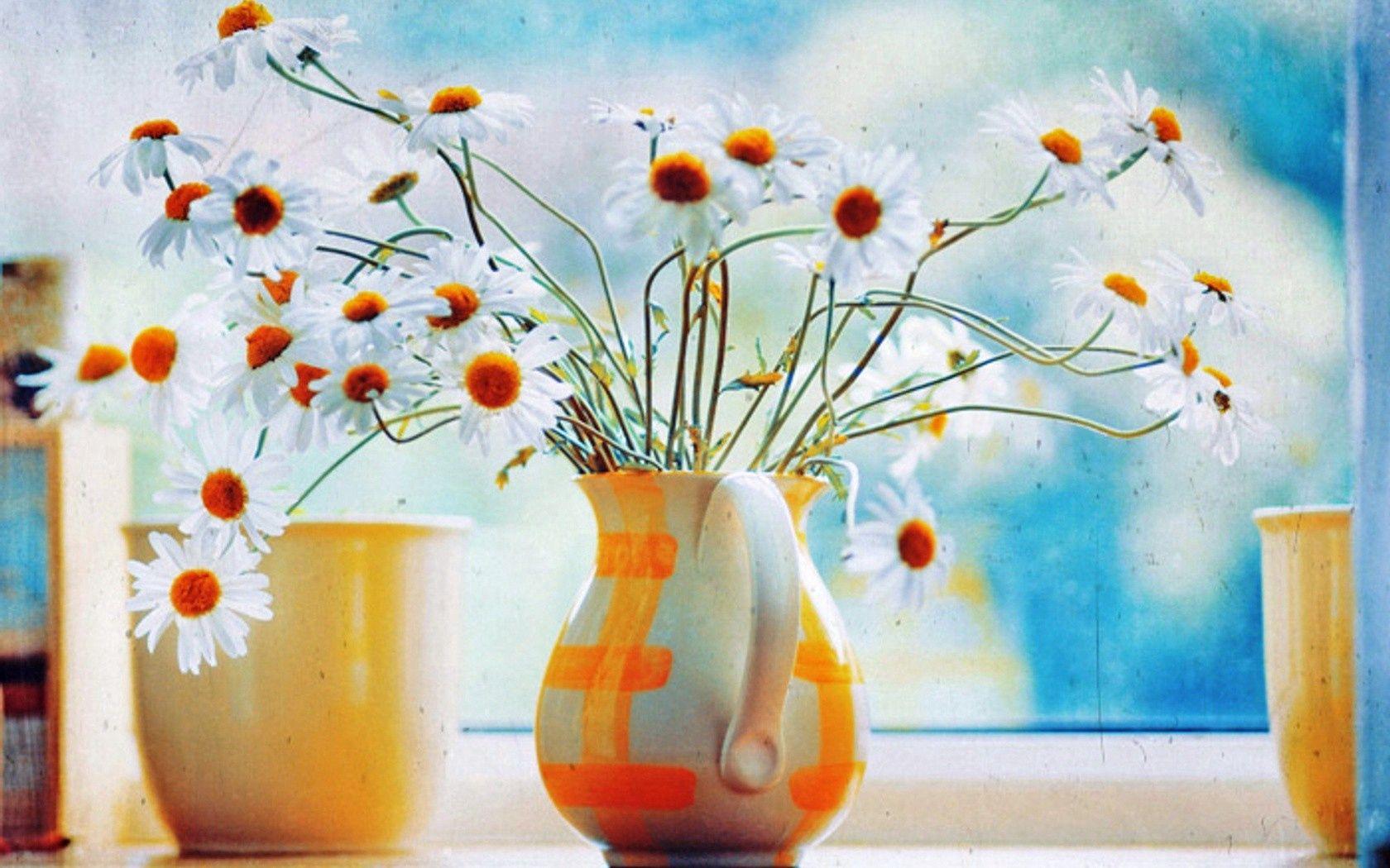 141645 Заставки и Обои Ромашки на телефон. Скачать Цветы, Ромашки, Кувшин, Букет, Окно картинки бесплатно