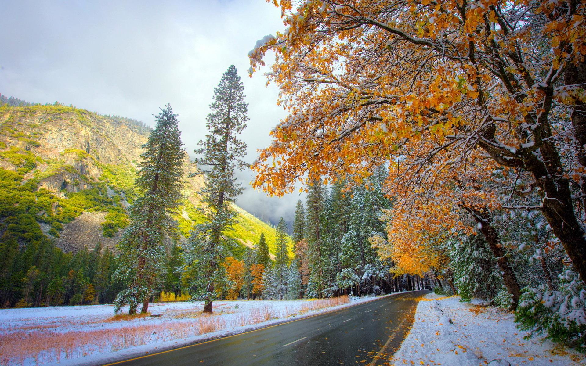 21964 скачать обои Пейзаж, Деревья, Горы, Осень, Снег - заставки и картинки бесплатно