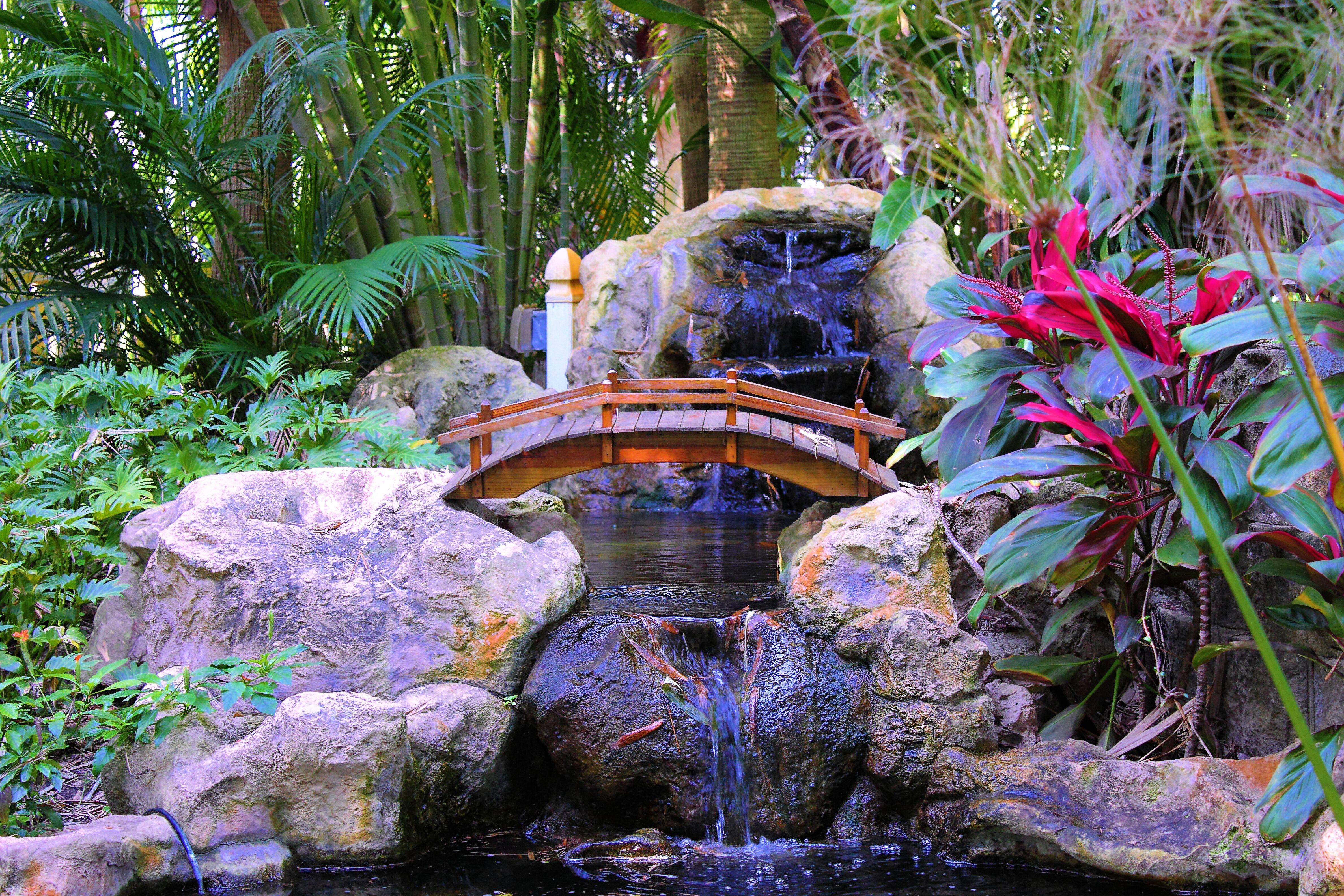 141808 скачать обои Водопад, Растения, Природа, Камни, Пальмы, Интерьер, Мостик - заставки и картинки бесплатно