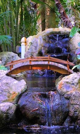 141808 скачать обои Природа, Камни, Растения, Водопад, Мостик, Интерьер, Пальмы - заставки и картинки бесплатно