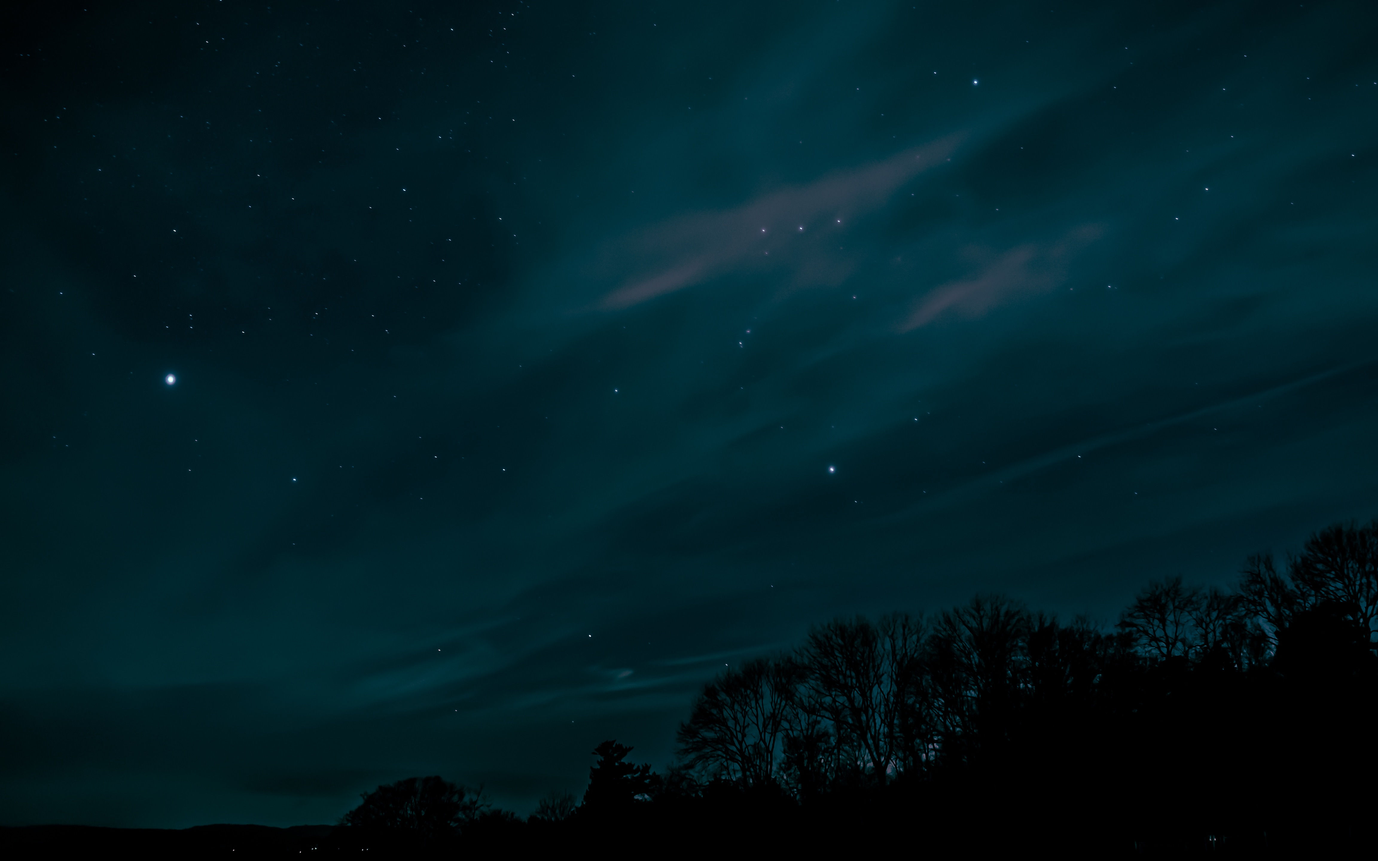 84480 download wallpaper Dark, Trees, Sky, Stars, Night screensavers and pictures for free