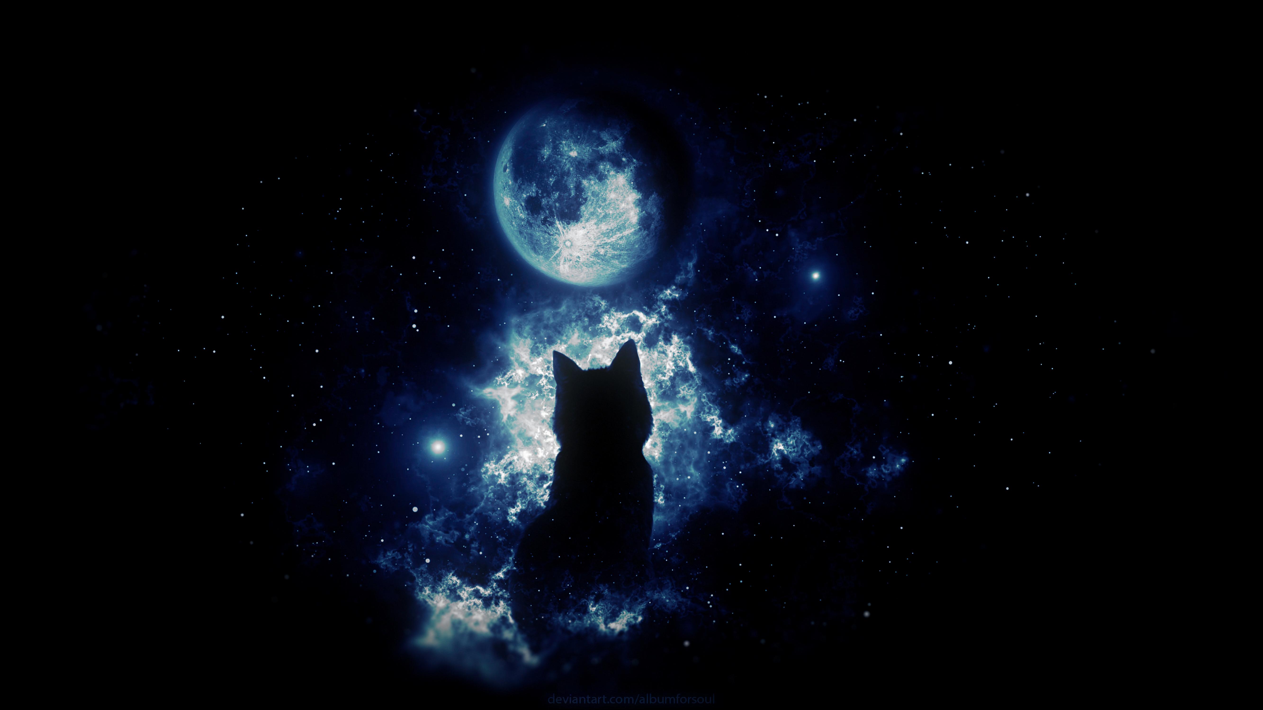 61068 Salvapantallas y fondos de pantalla Fantasía en tu teléfono. Descarga imágenes de Oscuro, Gato, Silueta, Luna, Cielo Estrellado, Arte, Fantasía gratis