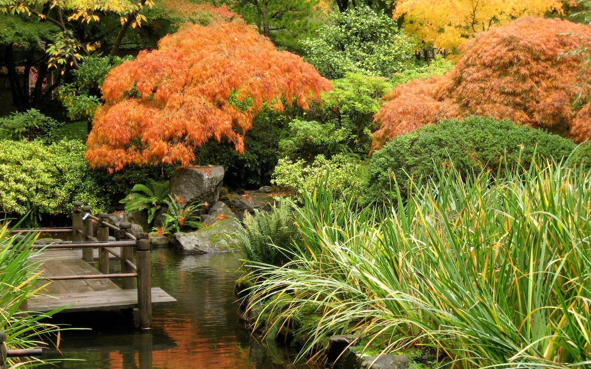 80259 Screensavers and Wallpapers Bridge for phone. Download Nature, Trees, Autumn, Bridge, Pond pictures for free