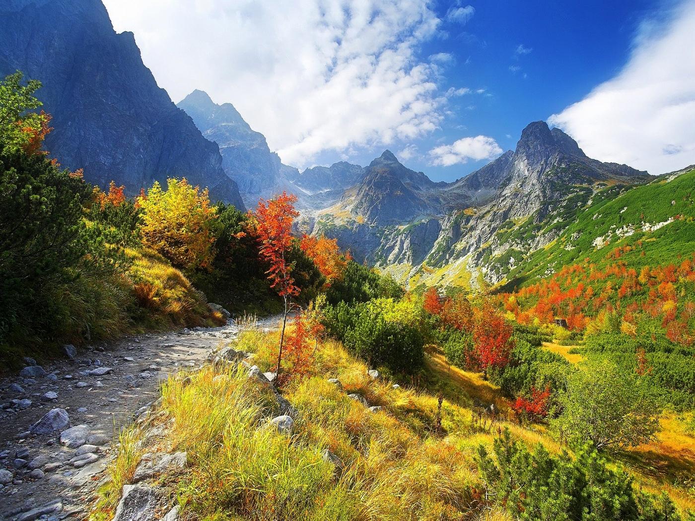 24742 скачать обои Пейзаж, Деревья, Горы - заставки и картинки бесплатно