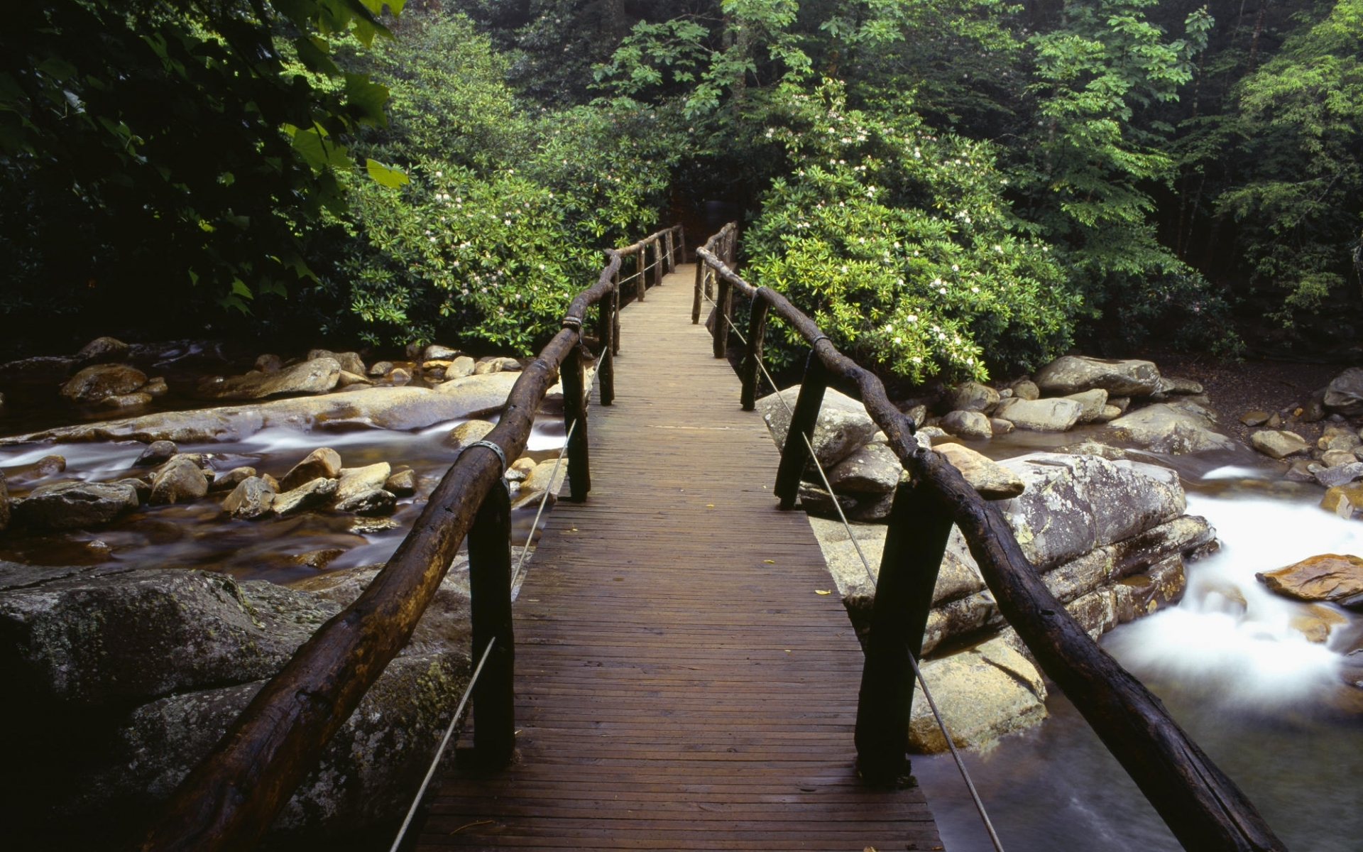 139 download wallpaper Landscape, Rivers, Bridges, Trees, Stones screensavers and pictures for free