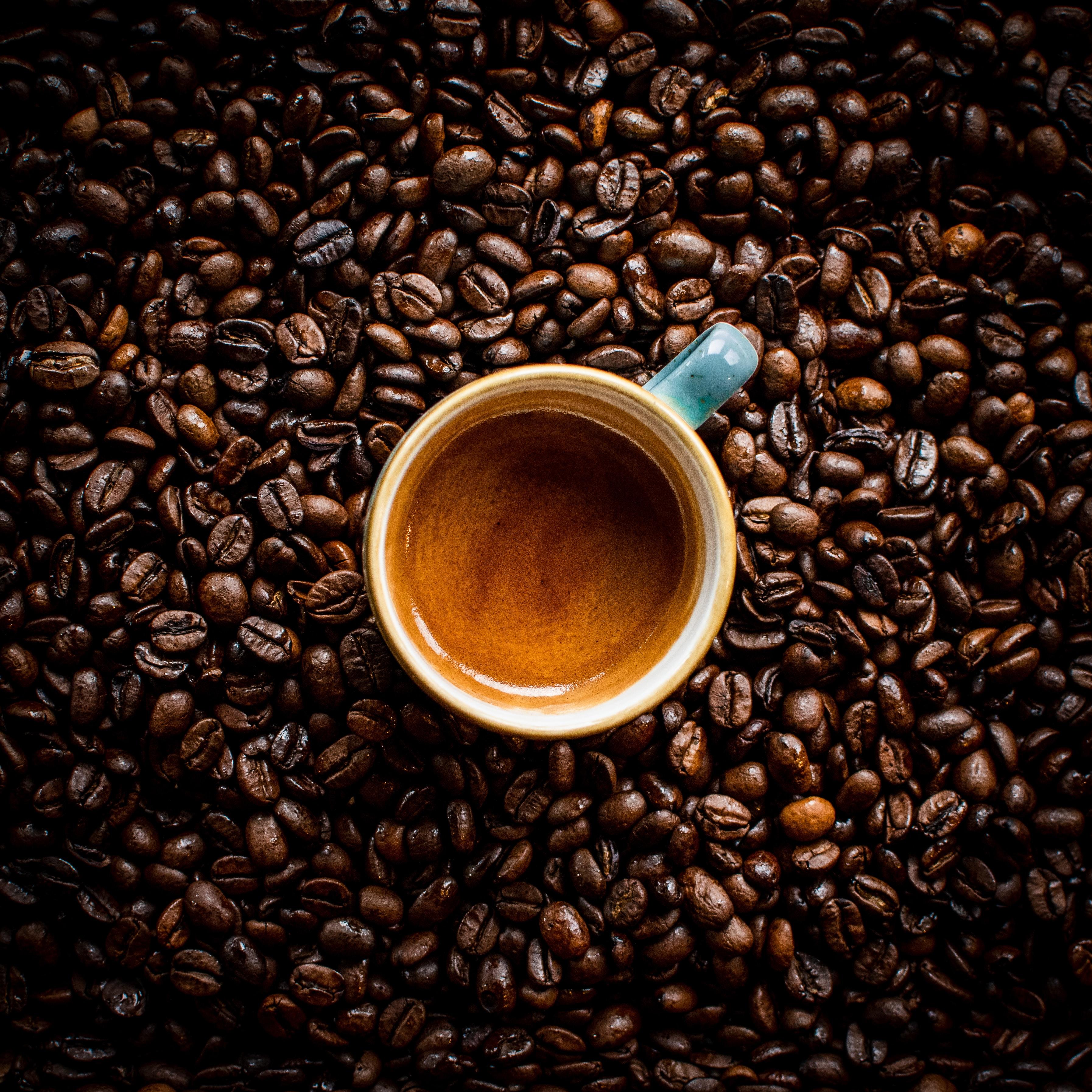 151901 papel de parede 360x640 em seu telefone gratuitamente, baixe imagens Comida, Café, Um Copo, Chávena, Castanho, Marrom, Bebida, Grãos De Café 360x640 em seu celular