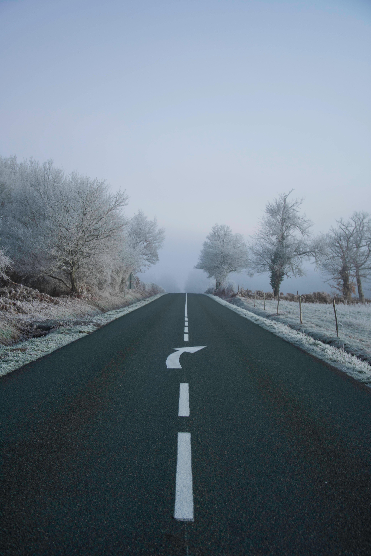 102718 Hintergrundbild herunterladen Natur, Pfeil, Straße, Markup, Nebel, Asphalt, Frost, Rauhreif - Bildschirmschoner und Bilder kostenlos