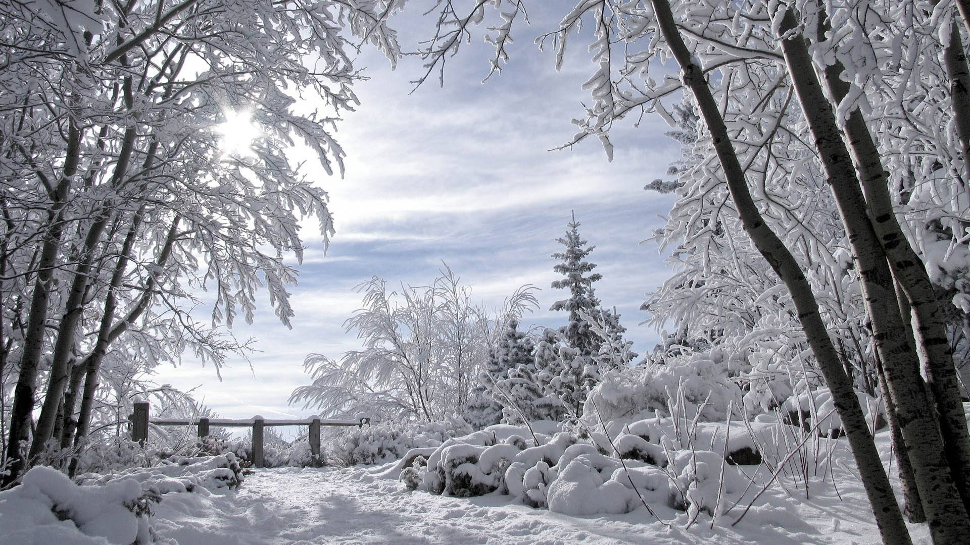 42704 download wallpaper Landscape, Winter, Snow screensavers and pictures for free