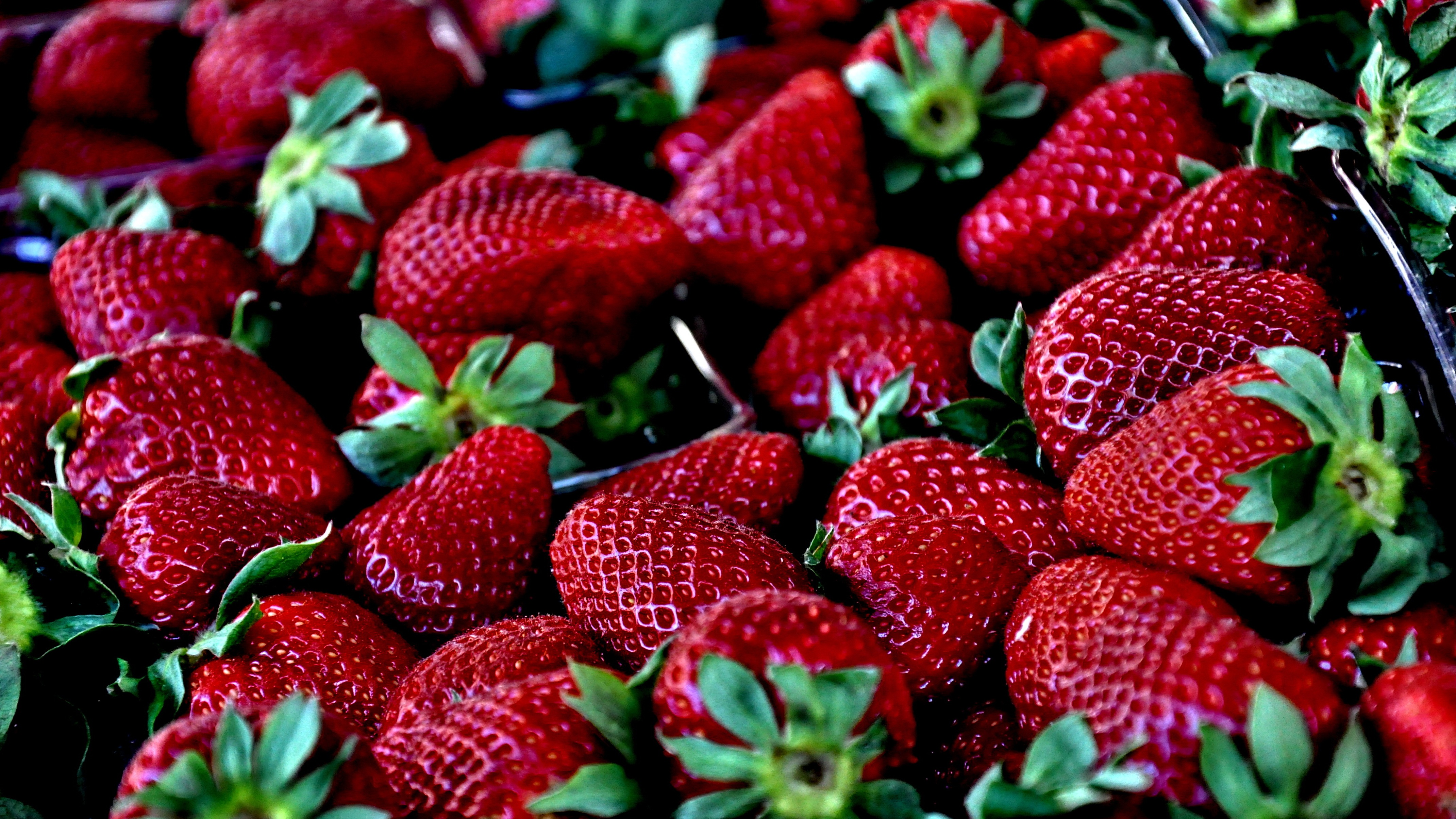 Popular Berries images for mobile phone