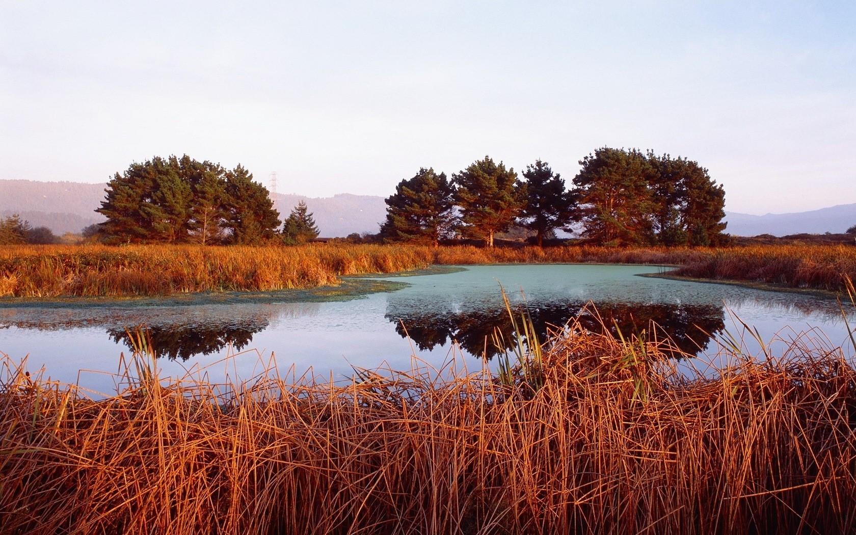 22603 скачать обои Пейзаж, Река, Деревья, Закат - заставки и картинки бесплатно