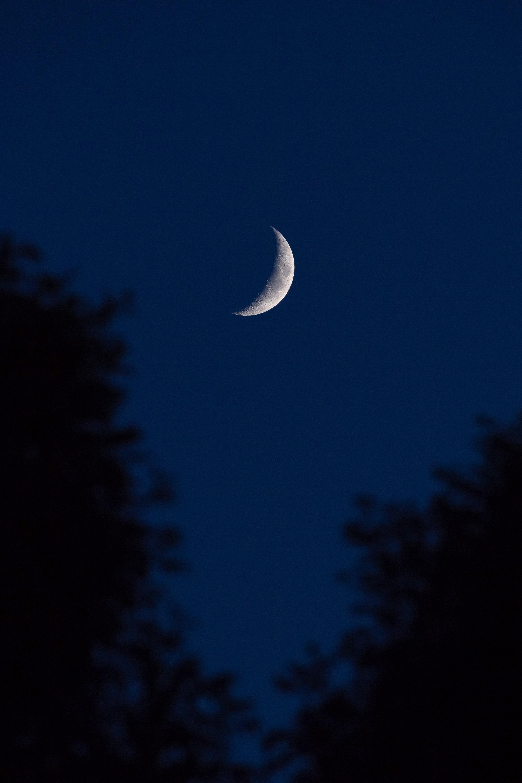 64613 скачать обои Луна, Небо, Ночь, Темные, Темный, Очертания, Полумесяц - заставки и картинки бесплатно