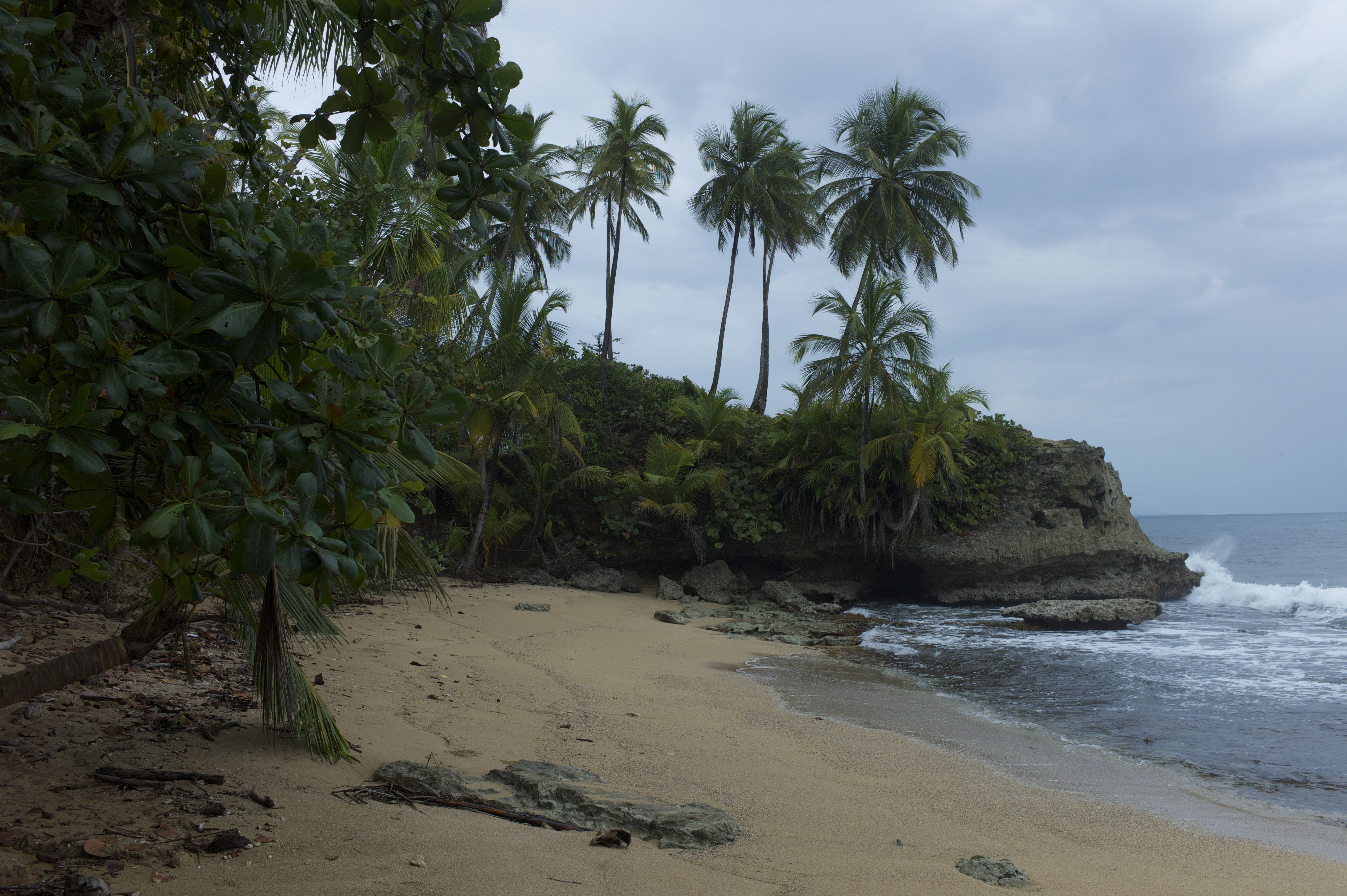 114667 Screensavers and Wallpapers Landscape for phone. Download Nature, Sea, Shore, Bank, Landscape, Palms pictures for free
