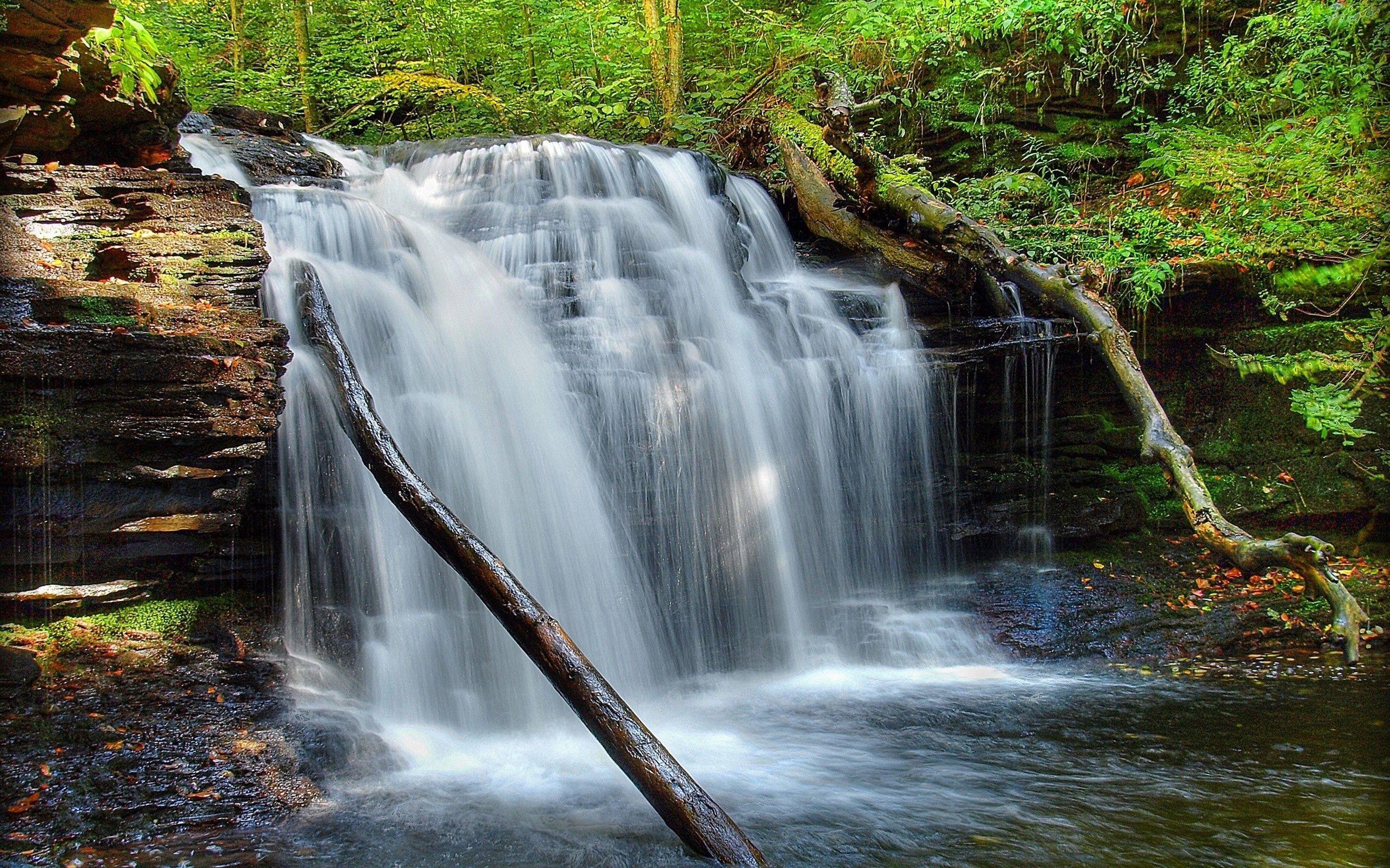 130446 Заставки и Обои Река на телефон. Скачать Водопад, Река, Природа, Трава, Мох картинки бесплатно