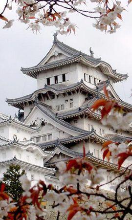 23921 baixar papel de parede Paisagem, Flores, Árvores, Arquitetura, Ásia, Sakura - protetores de tela e imagens gratuitamente
