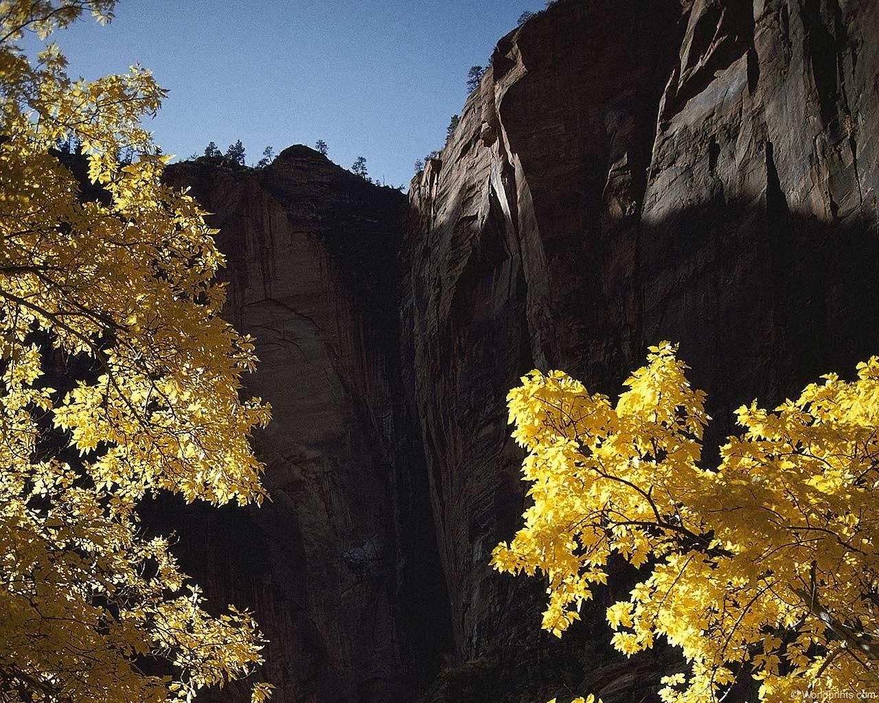 11191 скачать обои Пейзаж, Деревья, Горы, Осень - заставки и картинки бесплатно