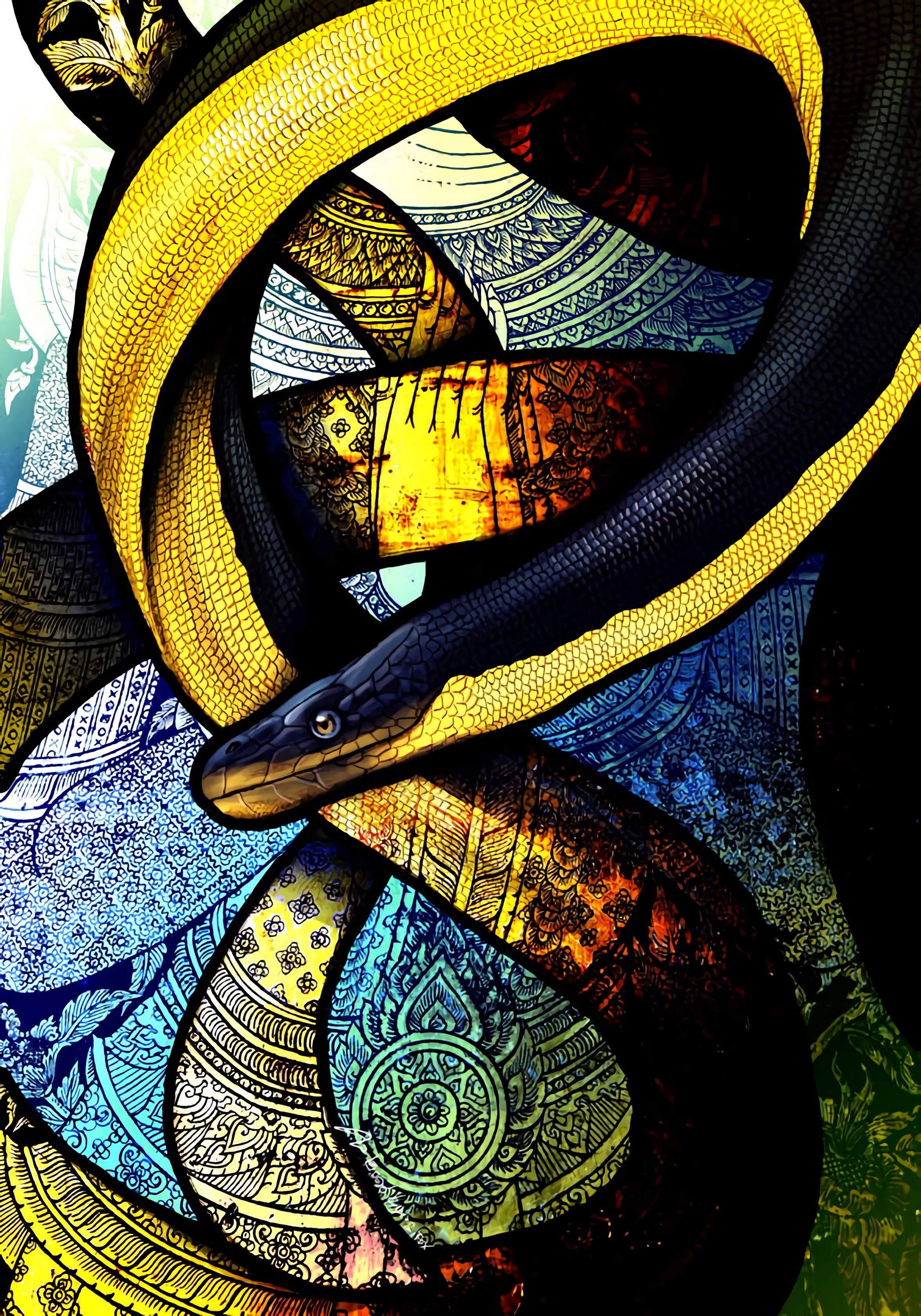 98865 Screensavers and Wallpapers Snake for phone. Download Art, Patterns, Snake, Winding, Sinuous pictures for free