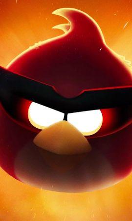 15406 télécharger le fond d'écran Jeux, Oiseaux, Angry Birds - économiseurs d'écran et images gratuitement