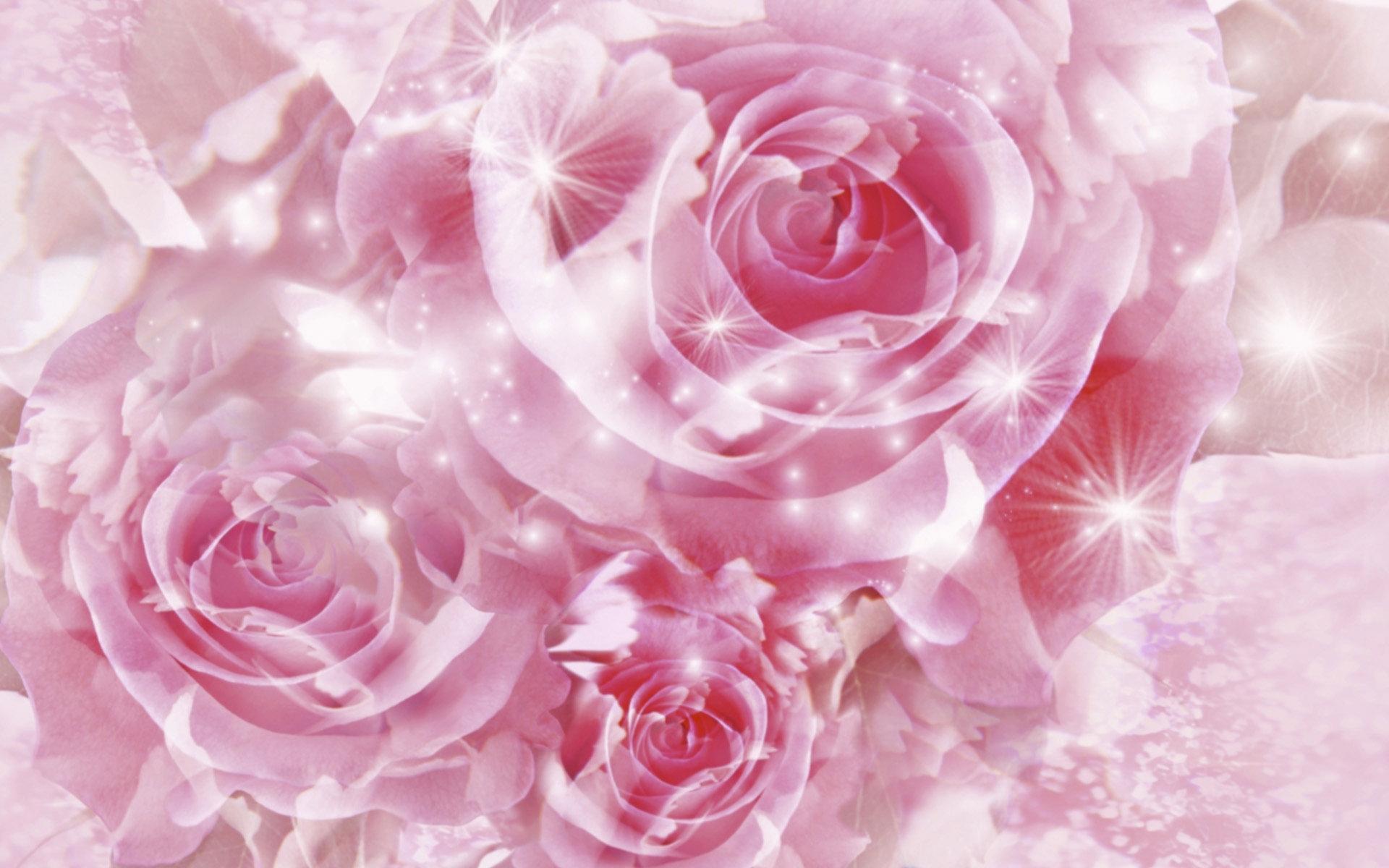 3017 скачать обои Цветы, Фон, Розы - заставки и картинки бесплатно