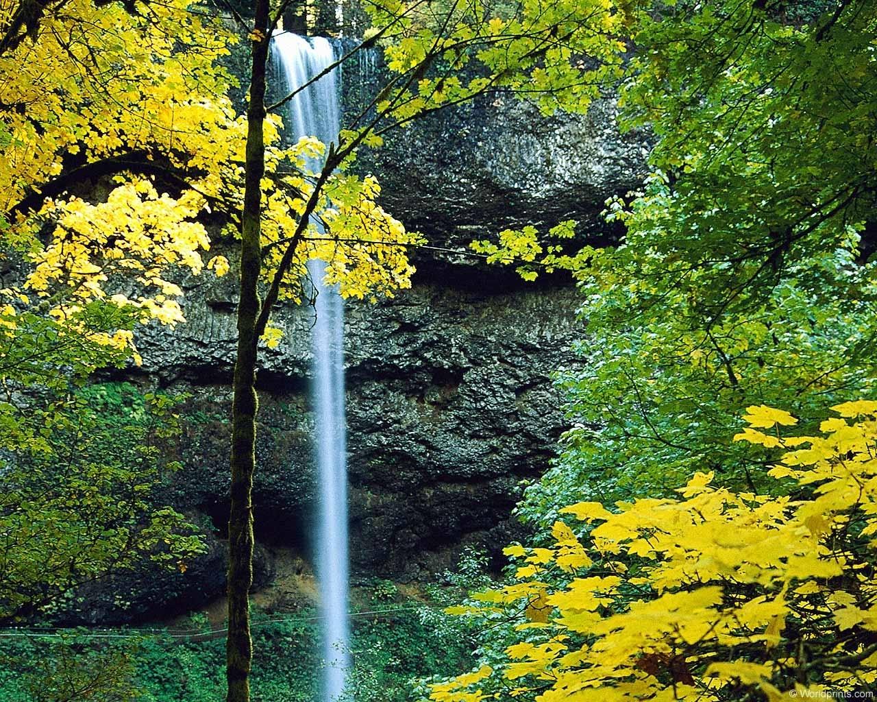 3072 скачать обои Пейзаж, Деревья, Осень, Водопады - заставки и картинки бесплатно