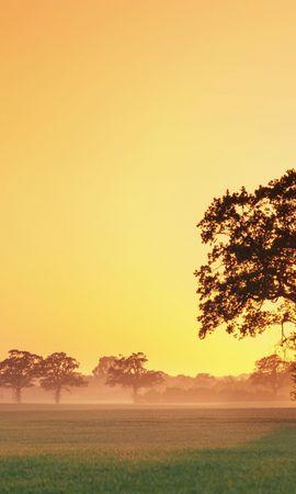 41910 descargar fondo de pantalla Paisaje, Naturaleza, Puesta Del Sol: protectores de pantalla e imágenes gratis