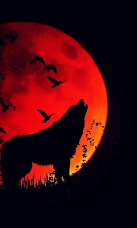 61881 Screensavers and Wallpapers Dark for phone. Download Dark, Wolf, Howl, Silhouette, Full Moon, Fiery Moon, Moon Of Fire pictures for free