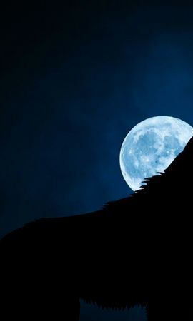 121132 Screensavers and Wallpapers Dark for phone. Download Dark, Wolf, Silhouette, Moon, Night pictures for free