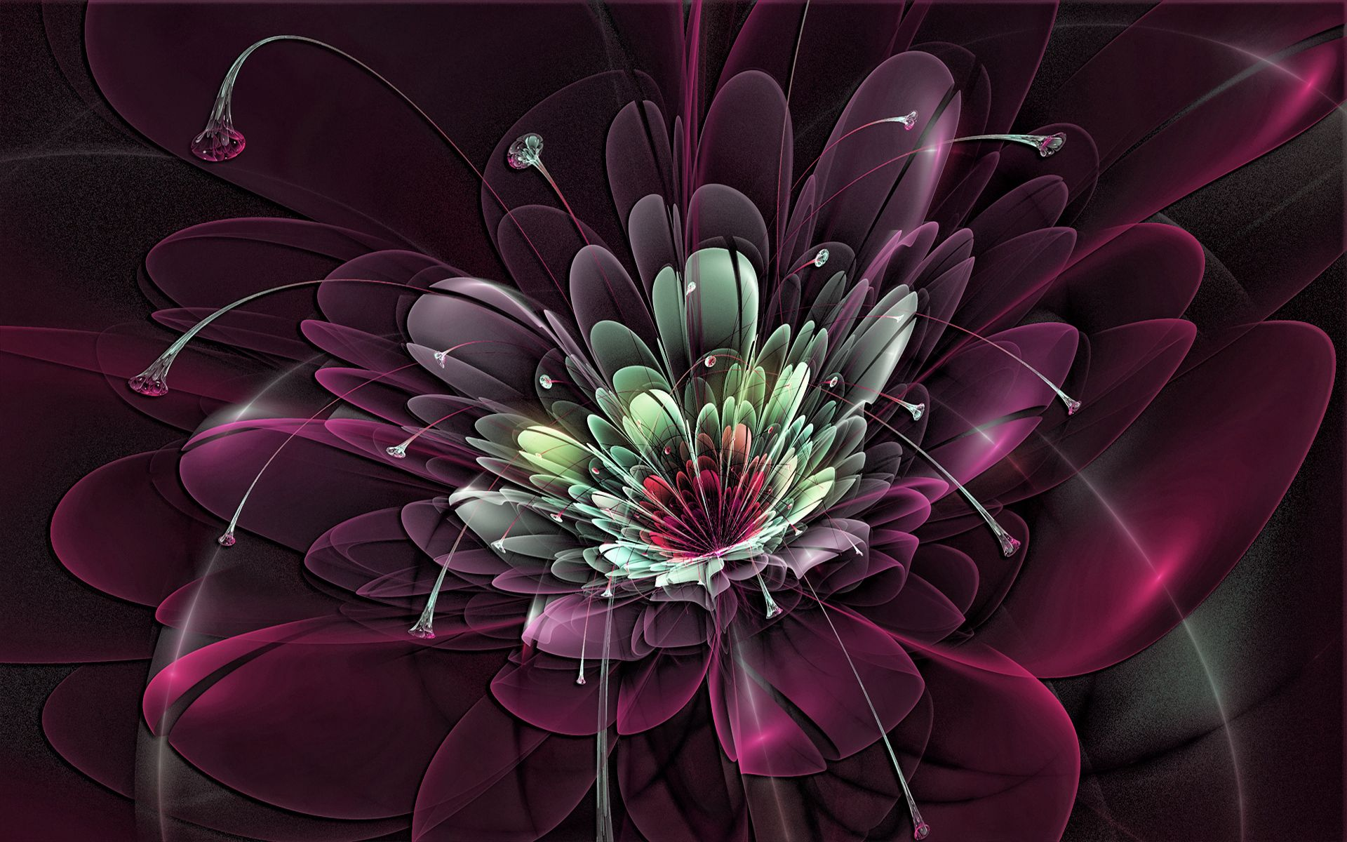 143056 Hintergrundbild herunterladen Hintergrund, Abstrakt, Blume, Fraktale, Explosion - Bildschirmschoner und Bilder kostenlos