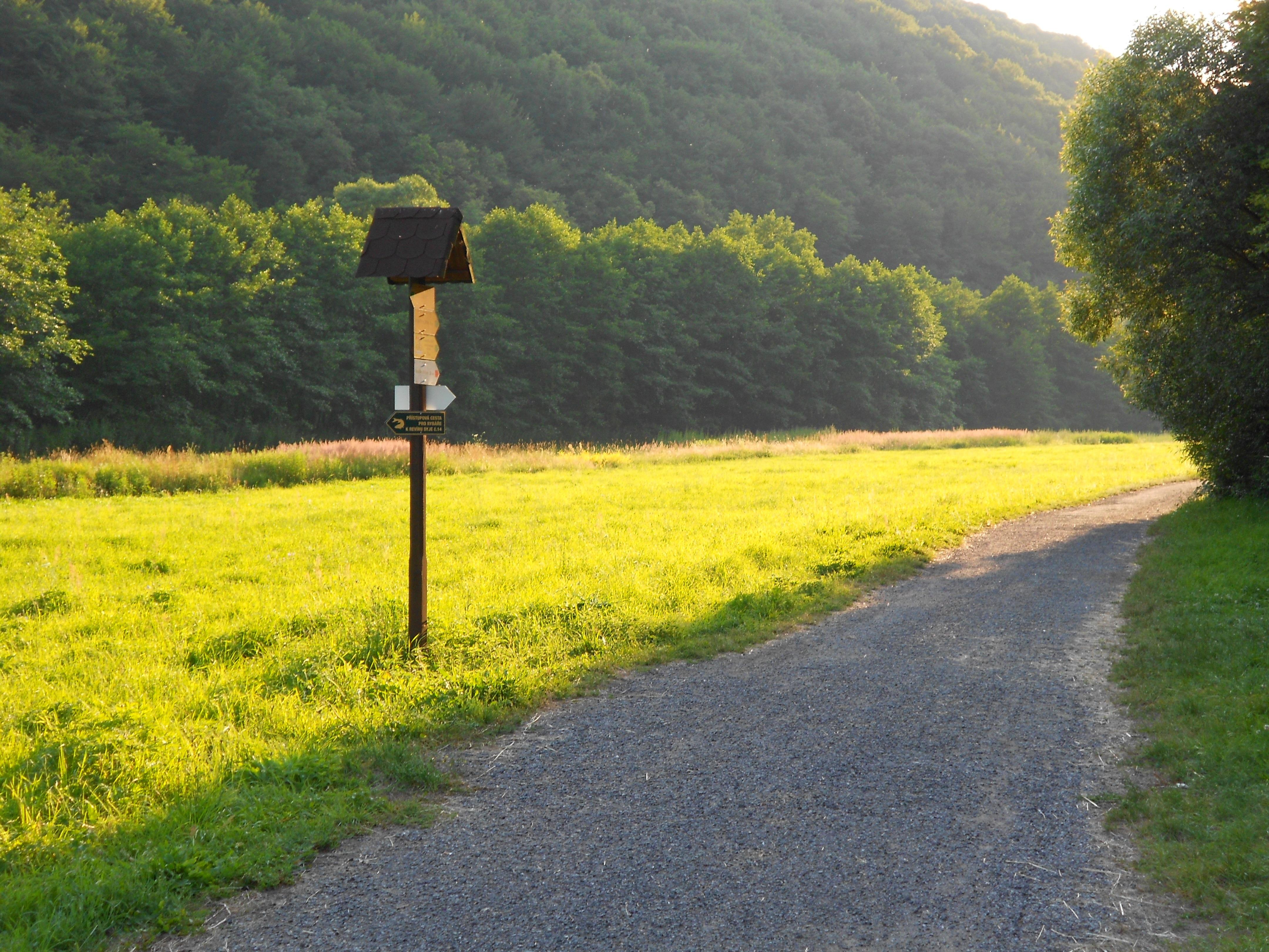 62393 免費下載壁紙 性质, 草地, 草, 路, 符号, 标志, 树 屏保和圖片