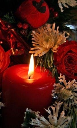 2638 descargar fondo de pantalla Vacaciones, Flores, Año Nuevo, Navidad, Velas: protectores de pantalla e imágenes gratis