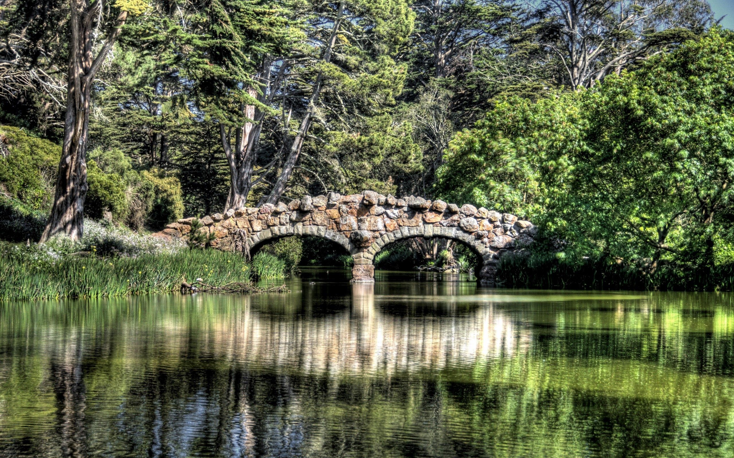 107171 Screensavers and Wallpapers Bridge for phone. Download Nature, Rivers, Trees, Reflection, Bridge pictures for free